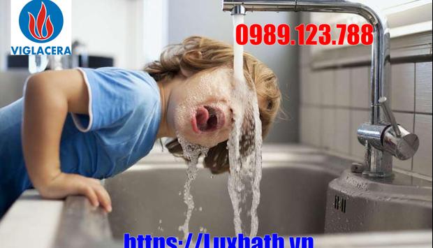 Mẫu Vòi Rửa Bát Viglacera Chính Hãng Giá Rẻ Tại Luxbath