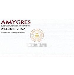 Gạch ốp tường Á Mỹ 30x60 21.E.360.2367
