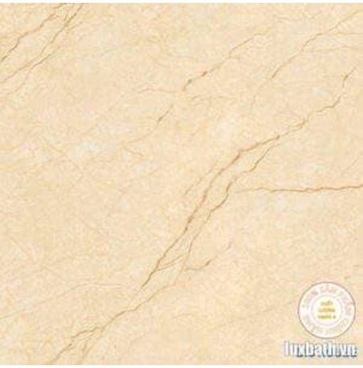 Gạch lát nền granite Viglacera 80x80 MDP822