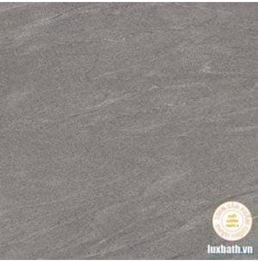 Gạch lát nền granite Viglacera 80x80 TM802