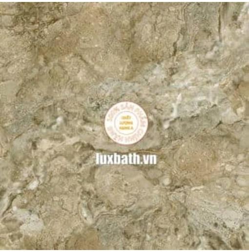 Gạch lát nền granite Viglacera 80x80 Eco 821
