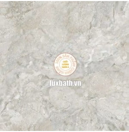 Gạch lát nền granite Viglacera 80x80 Eco 832