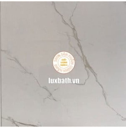 Gạch lát nền granite Viglacera 80x80 MDP821