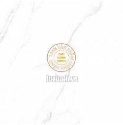 Gạch lát nền granite Viglacera 60x60 Eco S601