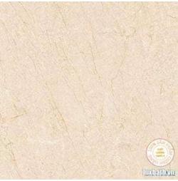 Gạch lát nền granite Viglacera 80x80 TQ 803