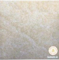 Gạch lát nền granite Viglacera 80x80 TQ 802