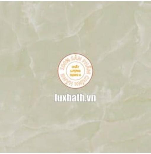 Gạch lát nền granite Viglacera 60x60 B6006
