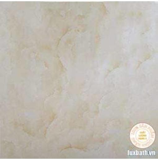 Gạch lát nền granite Viglacera 60x60 BQ6002