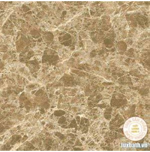 Gạch lát nền granite Viglacera 60x60 Eco D625