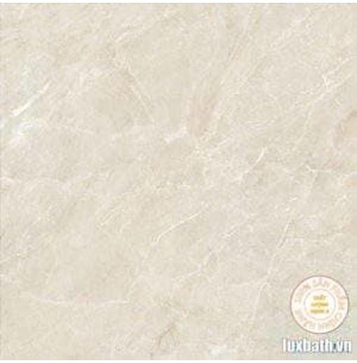Gạch lát nền granite Viglacera 60x60 Eco S622