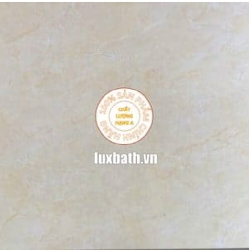 Gạch lát nền granite Viglacera 60x60 MDP623
