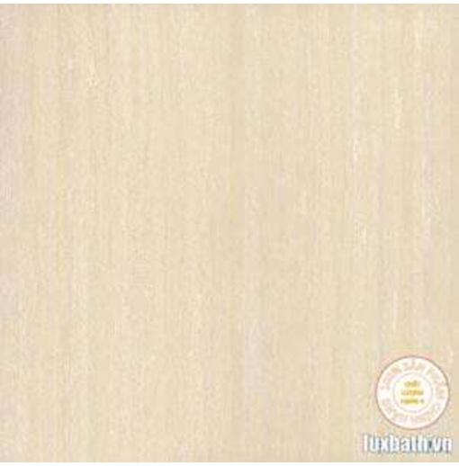 Gạch lát nền granite Viglacera 60x60 TS3-615