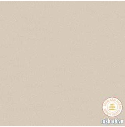Gạch lát nền granite Viglacera 60x60 TS5-601