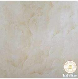 Gạch lát nền granite Viglacera 60x60 BQ 6002