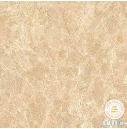 Gạch lát nền granite Viglacera 60x60 Eco S603