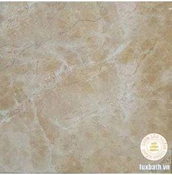 Gạch lát nền granite Viglacera 60x60 TB602
