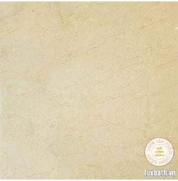 Gạch lát nền granite Viglacera 60x60 TQ603