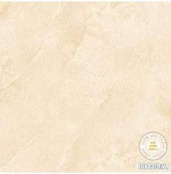 Gạch lát nền granite Viglacera 60x60 TQ608