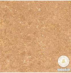 Gạch lát nền granite Viglacera 60x60 TS1-610