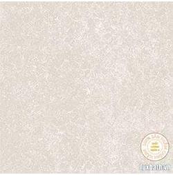 Gạch lát nền granite Viglacera 60x60 TS2-617
