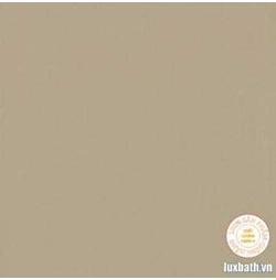 Gạch lát nền granite Viglacera 60x60 TS6-602