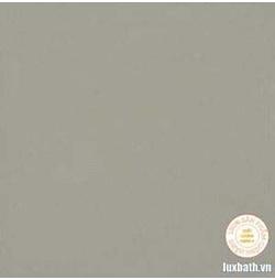 Gạch lát nền granite Viglacera 60x60 TS6-603