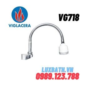 Vòi chậu rửa bát 1 đường lạnh Viglacera VG718